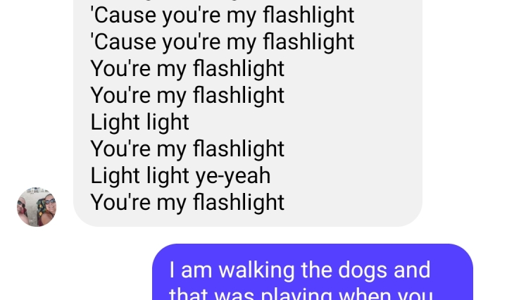 lyrics to the song Flashlight on a screenshot