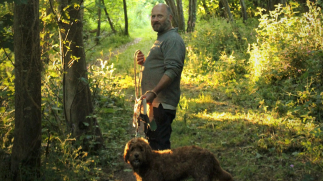 man walking dog in sunlit forest